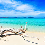 Tropical beach Malcapuya Stock Photography