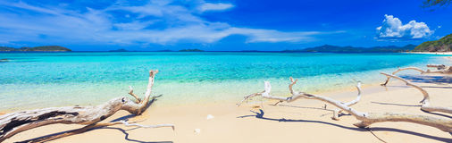 Free Tropical Beach Malcapuya Royalty Free Stock Image - 20657506