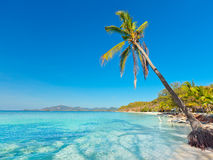 Tropical beach Malcapuya Stock Images