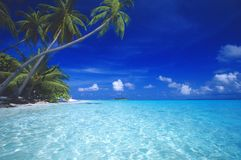 Tropical beach maldives. Tropical beach in Maldives, blue lagoon Stock Photos