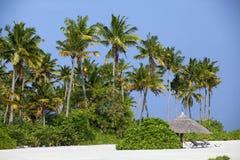 Tropical beach in the Maldives Stock Photos