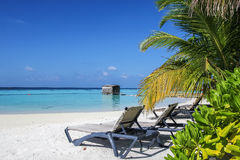 Tropical beach, Maldives stock photo