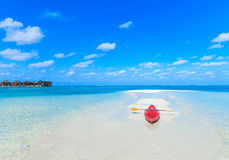 Tropical beach in Maldives Royalty Free Stock Images