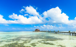 Tropical beach in Maldives Royalty Free Stock Image