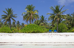 Tropical beach Maldives Royalty Free Stock Images