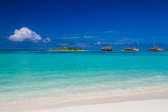Tropical beach in Maldives, Paradise Island Stock Image
