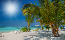 Tropical beach in Maldives.Tropical Paradise at Maldives with palms, sand and blue sky Stock Photography