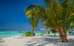 Tropical beach in Maldives.Tropical Paradise at Maldives with palms, sand and blue sky Royalty Free Stock Images