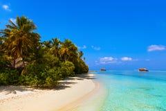 Tropical beach at Maldives Royalty Free Stock Photo