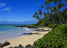 Tropical Beach, Maui Royalty Free Stock Photography