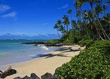 Tropical Beach, Maui. Lovely beach at Kanaha Park near Kahului Airport, Maui, Hawaii Royalty Free Stock Photography