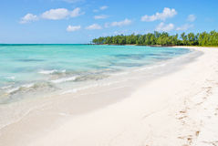 Tropical beach in Mauritius Stock Photo