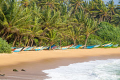 Tropical beach in Mirissa, Sri Lanka Royalty Free Stock Photo