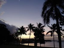 Tropical beach in moonlight. Evening scene of a tropical beach in moonlight in Australia Stock Photo