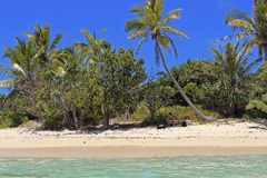 Tropical beach on Mystery island, Vanuatu Stock Photos