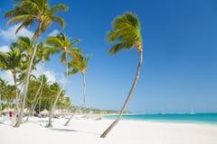 Tropical beach near tourist resort Royalty Free Stock Photos