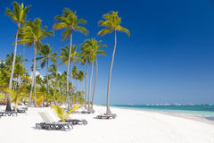 Tropical beach near tourist resort Royalty Free Stock Photo
