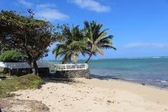 Tropical beach. On Oahu Island Stock Photography