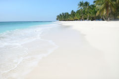 Tropical Beach and Ocean Royalty Free Stock Image