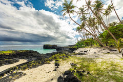 Tropical beach and ocean on Samoa Island with palm trees during. Late afternoon Stock Photos