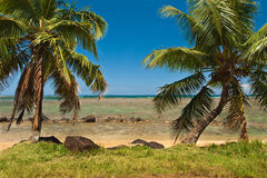 Tropical Beach on the ocean shore Stock Image