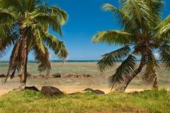 Tropical Beach on the ocean shore. Beautiful Sunny day on the Anini Beach in Kauai Hawaii Stock Image