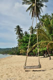 Tropical beach with Old Swing Tied to tree Royalty Free Stock Images