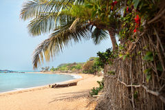Tropical beach. Tropical Om beach and coconut palm trees near the blue ocean in Gokarna, Karnataka, India Royalty Free Stock Photos