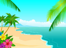 Tropical beach. With palm leaf and hibiscus flowers Stock Photos
