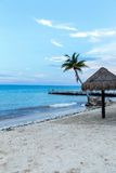 Tropical Beach with palm and palapa Royalty Free Stock Photos