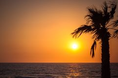 Tropical beach with palm at sunset and reflections Royalty Free Stock Photo