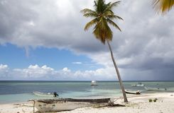 Tropical beach, palm tree and boats. At the Saona island. Saona Island is a tropical island located a short distance from the mainland on the south-east tip of Royalty Free Stock Photo