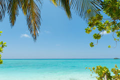 Tropical beach with palm tree leaf, idyllic tropical scenery, Ma Royalty Free Stock Image