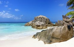 Tropical beach with palm tree and rocks Seychelles stock images