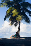 Tropical beach, palm tree with sitting blonde woman Royalty Free Stock Photography