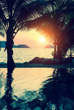 Tropical beach with palm trees during amazing sunset. Nature. Stock Photos