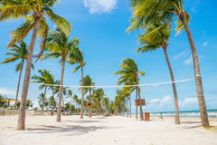 Tropical beach with palm trees, blue sky and white sand. Royalty Free Stock Photo