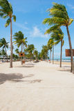 Tropical beach with palm trees, blue sky and white sand. Tropical beach with palm trees, blue sky and white sand Royalty Free Stock Photography