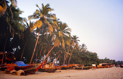 Goa India. Tropical beach with palm trees and boats in coastal Goa, India Stock Image