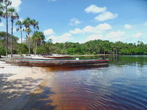 Tropical beach. With palm trees on the coast of the Canaima lagoon, Venezuela Royalty Free Stock Photos