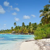 Tropical Beach with Palm Trees, Crystal Water and White Sand. Caribbean Beach with Palm Trees, Crystal Water and White Sand Stock Images