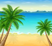 Tropical beach with palm trees Royalty Free Stock Photo