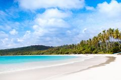 Tropical beach with palm trees. Island lagoon. Stock Photography