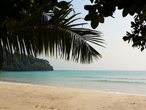 Tropical beach with palm trees on Koh Chang island in Thailand. Ocean crystal turquoise water beside a tropical island. Sunny day Royalty Free Stock Photo