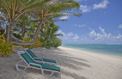 Tropical Beach with Palm Trees and Lounge Chairs Stock Photography