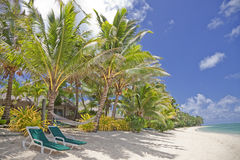 Tropical Beach with Palm Trees and Lounge Chairs Royalty Free Stock Photo
