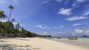 Tropical beach with palm trees in Phi Phi Don Island in Krabi, Thailand. Tropical beach with palm trees in Phi Phi Don Island in Krabi, Thailan Royalty Free Stock Image