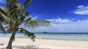 Tropical beach with palm trees in Phi Phi Don Island in Krabi, Thailand.  Royalty Free Stock Photo