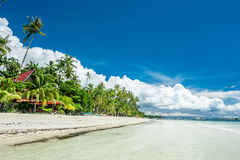 Tropical beach with palm trees at Philippines Royalty Free Stock Photography