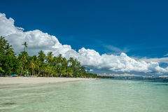 Tropical beach with palm trees at Philippines Royalty Free Stock Images